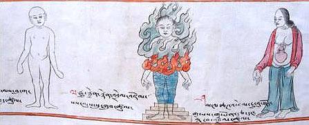 tibetan_medicine5
